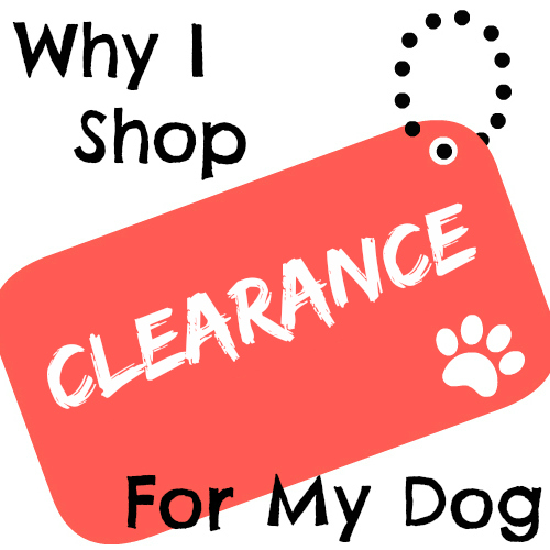 Why I Shop Clearance For My Dog