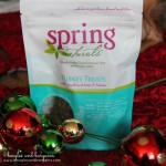 Spring Naturals Grain Free 95% Turkey Treats