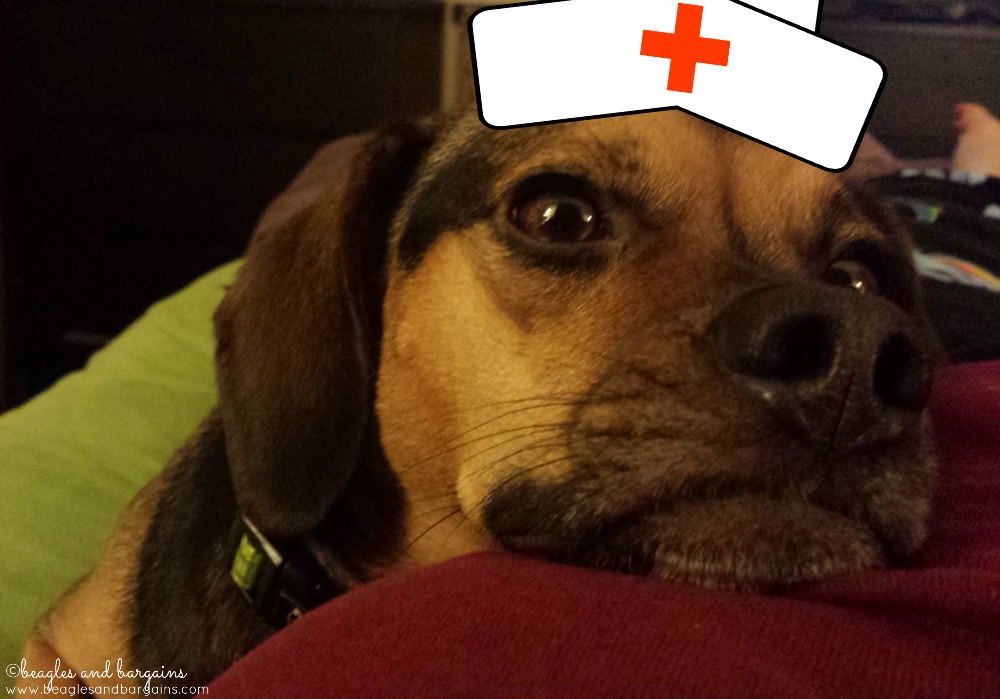 Nurse Luna