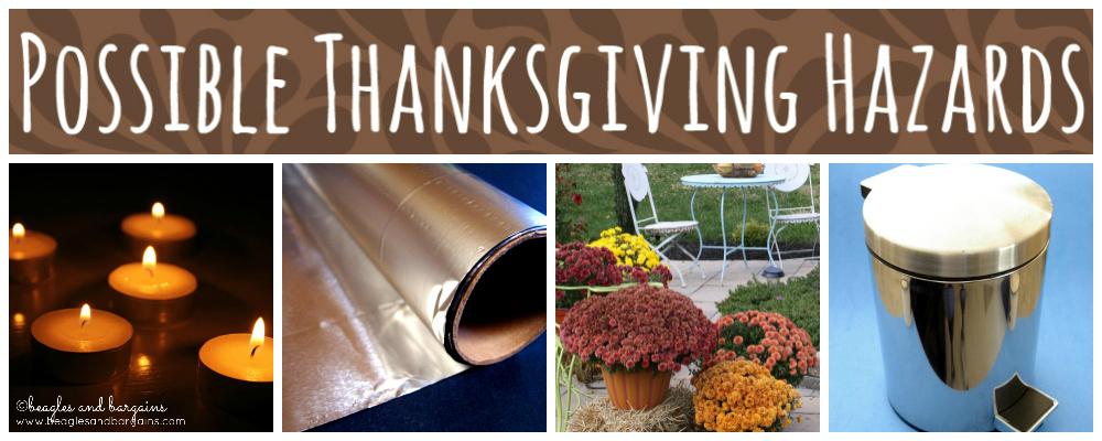 Possible Thanksgiving Hazards