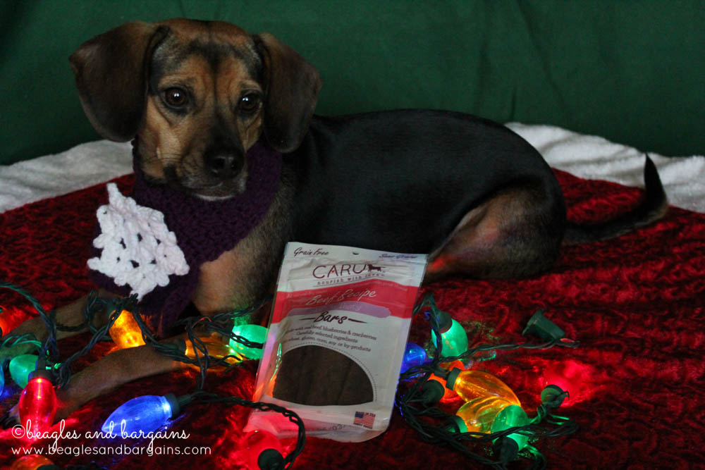 Stocking Stuffer Giveaway - Day 4 - Caru Soft 'n Tasty Bars