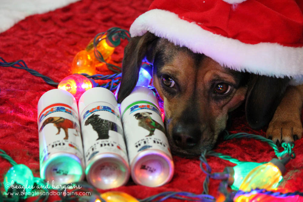 Stocking Stuffer Giveaway - Day 5 - Pet Paint