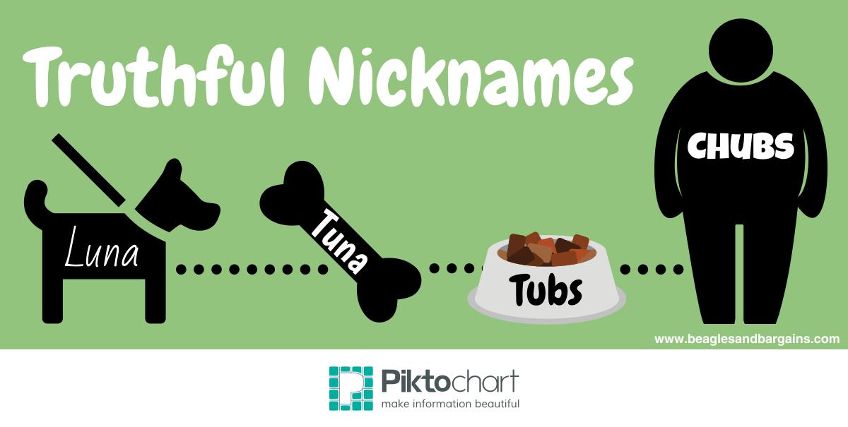 Luna's Truthful Nicknames in a Piktochart