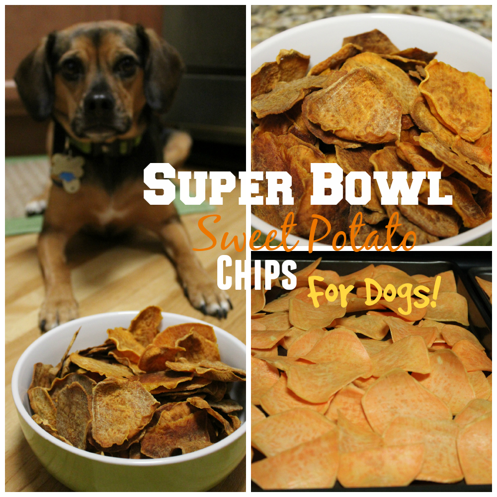Super Bowl Sweet Potato Chips for Dogs!
