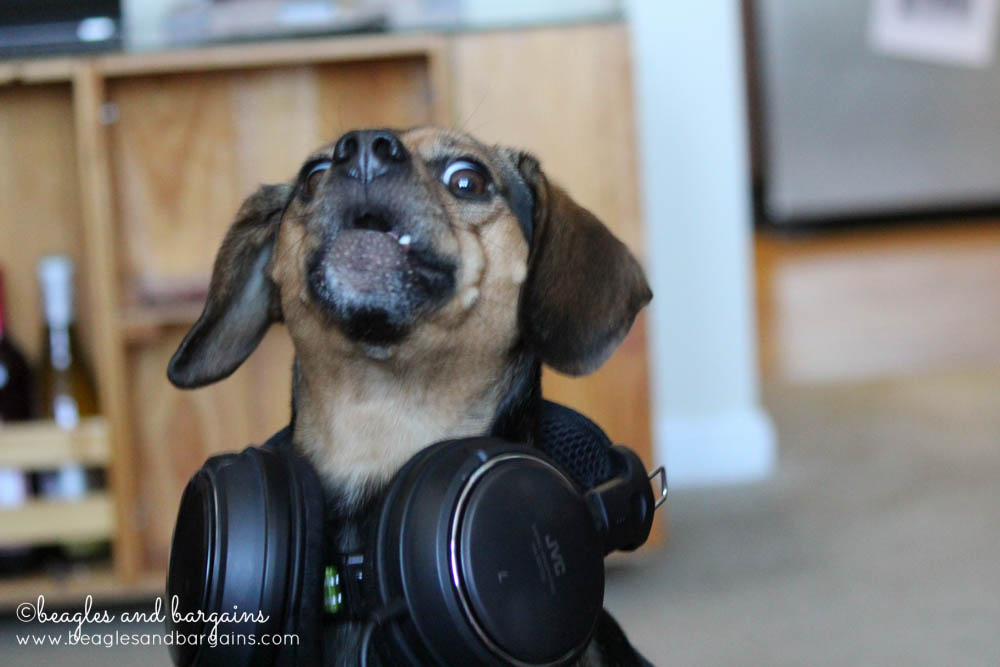 52 Snapshots of Life: MUSIC - Outtake