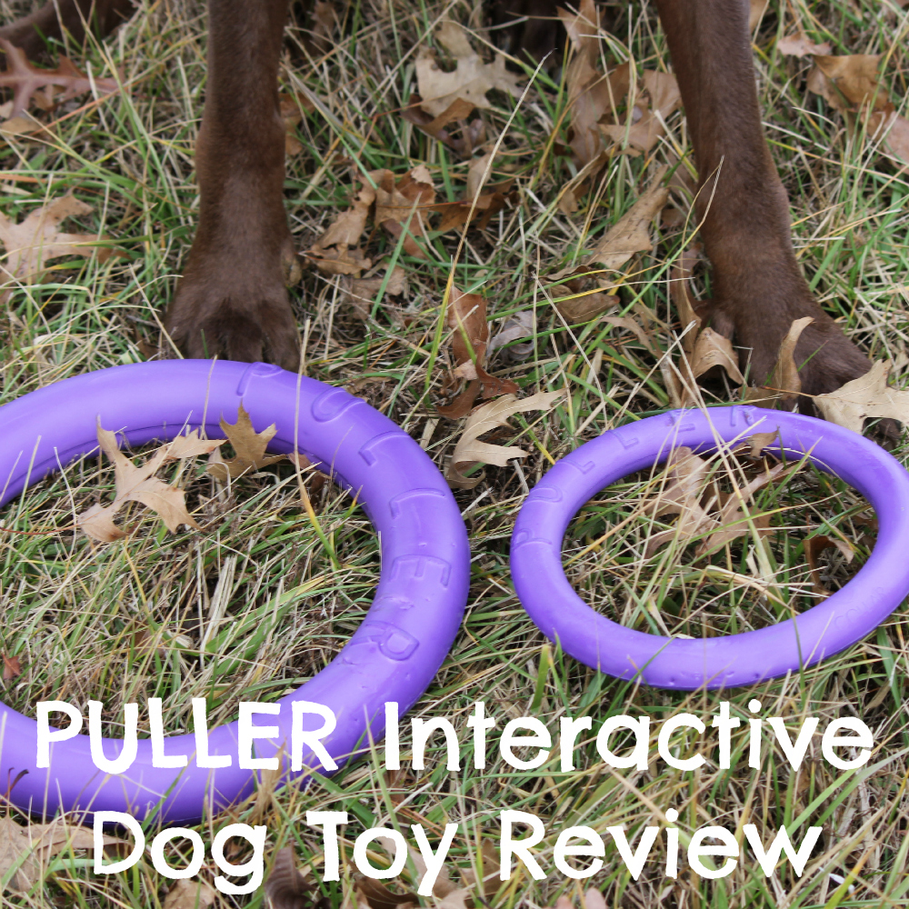 PULLER Interactive Dog Toy Review