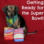 Getting Ready for the Super Bowl!