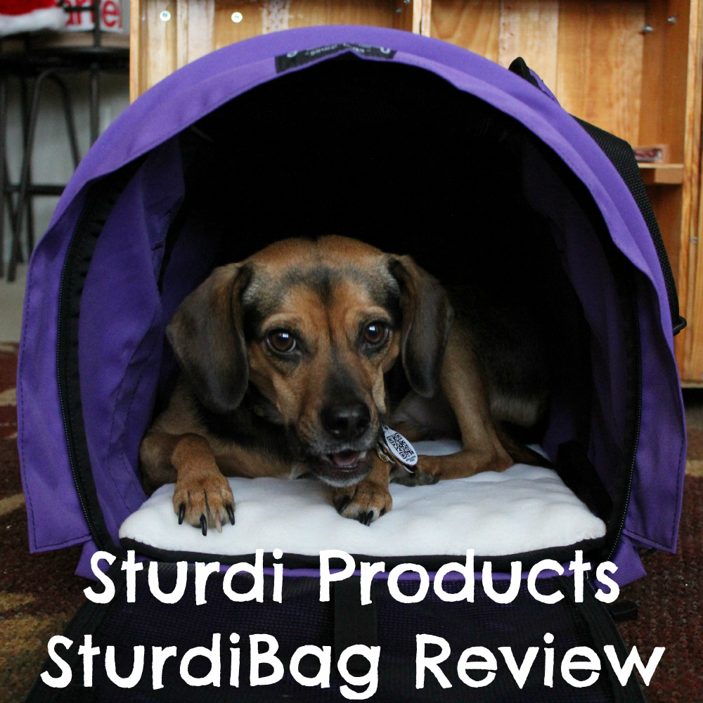 Sturdi Products SturdiBag Review