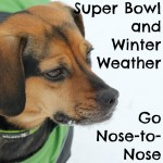 Super Bowl and Winter Weather Go Nose-to-Nose