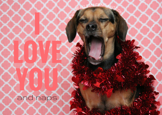 i love you and naps printable valentines day cards for dogs and dog lovers - Dog Valentines Day Cards