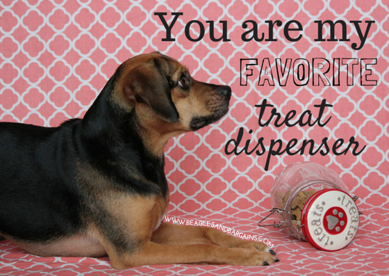 You are my favorite treat dispenser - Printable Valentine's Day Cards for Dogs and Dog Lovers