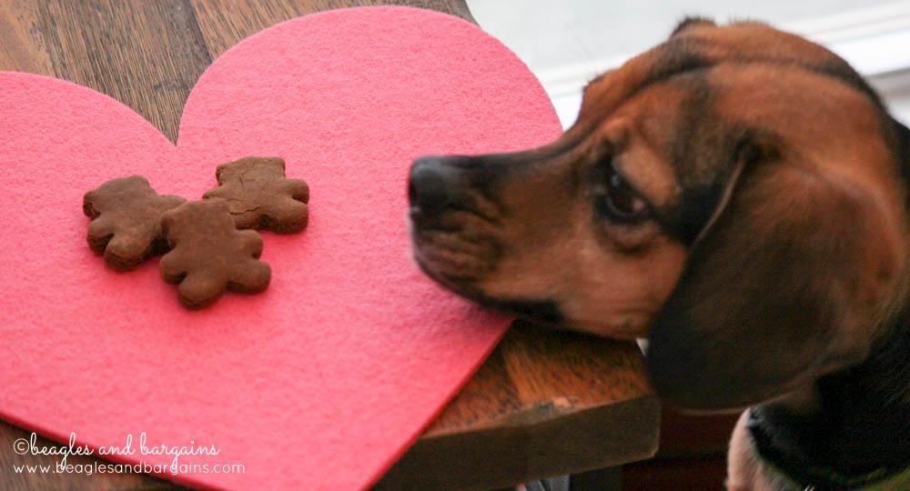 One Dog Organic Bakery  - Luna loves the Ginger Snaps
