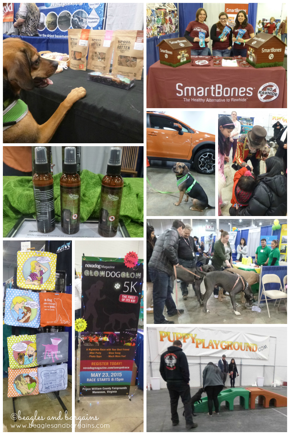 Photos from Super Pet Expo 2015