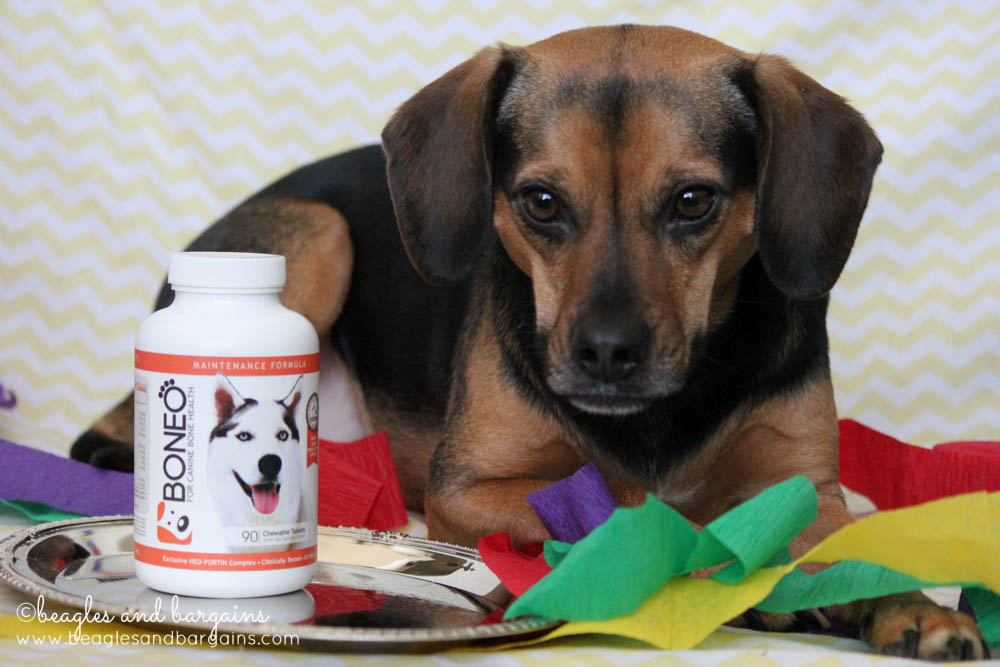 Luna uses BONEO Canine - Bone & Joint Supplement For Dogs