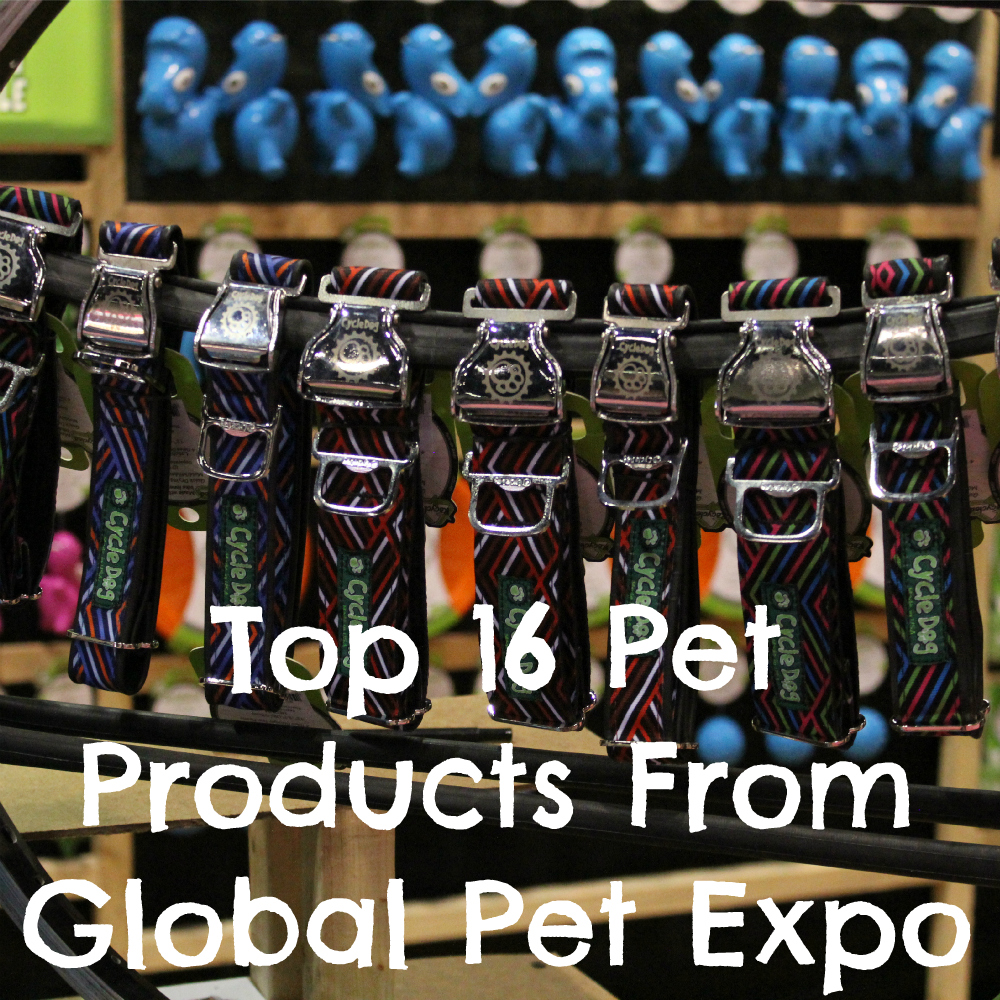 Top 16 Pet Products from Global Pet Expo 2015