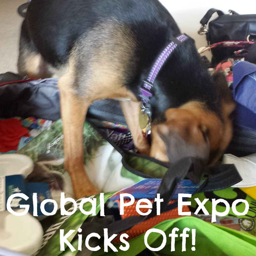 Global Pet Expo Kicks Off!