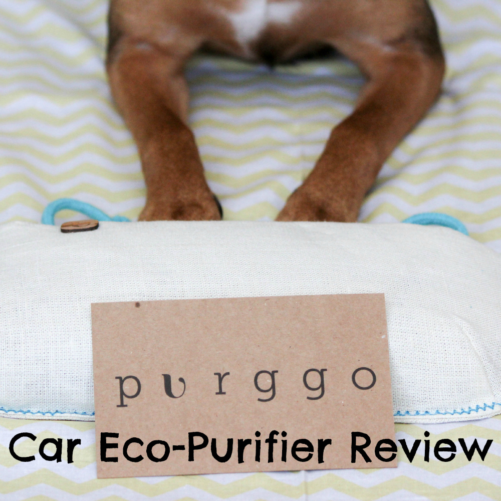PURGGO Car Eco-Purifier Review