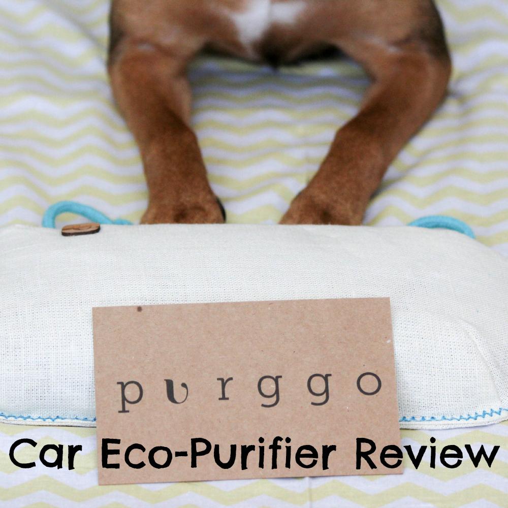 PURGGO Car Eco-Purifier Review