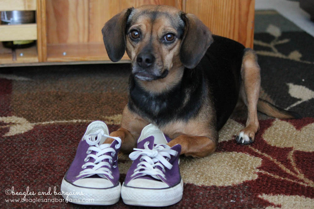 52 Snapshots of Life: PURPLE - Luna wearing purple shoes