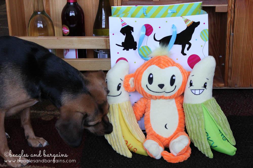 Luna's new Birthday toys!