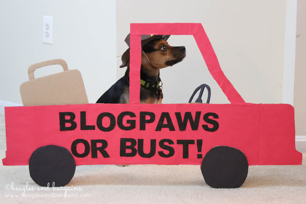 52 Snapshots of Life: TRAVEL - BlogPaws or Bust Photo Contest Entry