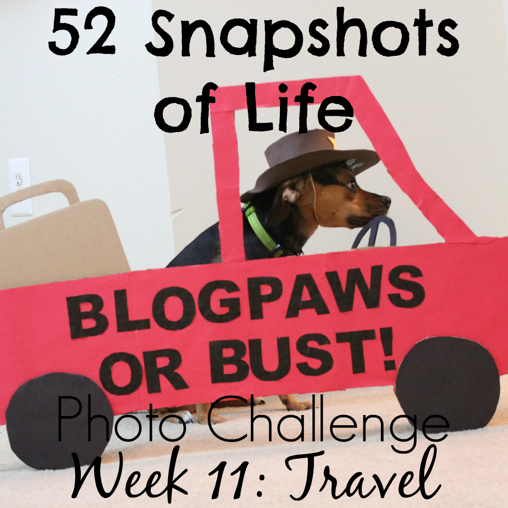 52 Snapshots of Life - Photo Challenge - Week 11: TRAVEL