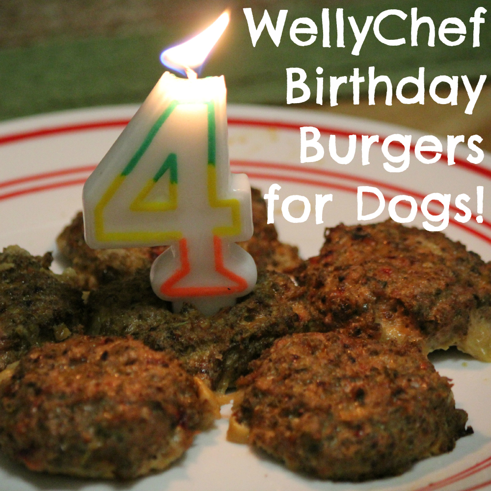 WellyChef Birthday Burgers for Dogs