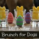 DIY Easter Brunch for Dogs