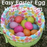 Can You Find the Easter Eggs? – Easy Easter Egg Hunt for Dogs!