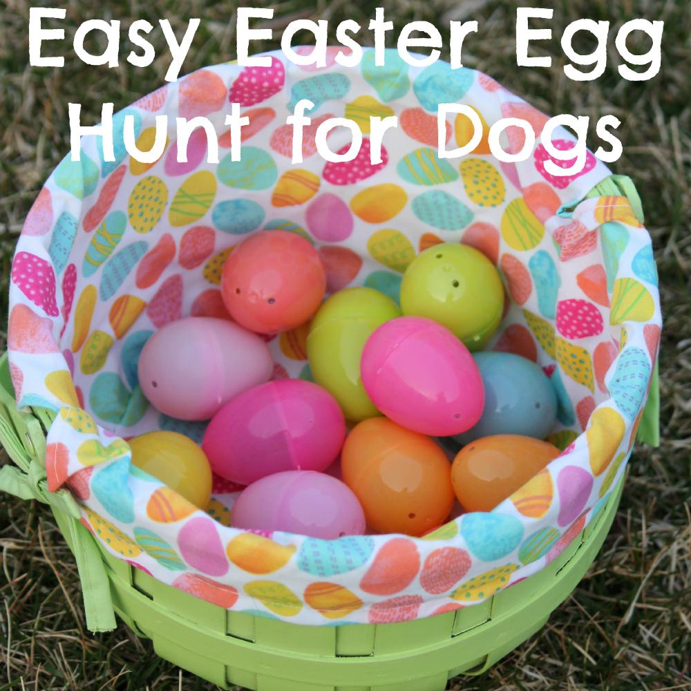 Easy Easter Egg Hunt for Dogs