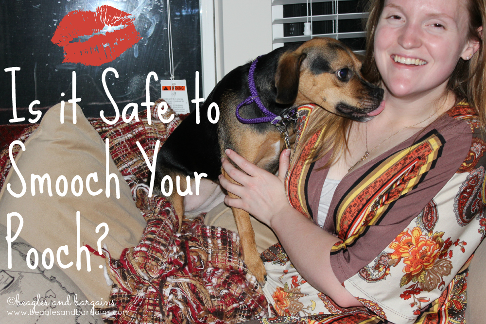 Kisses and Dogs - Is It Safe to Smooch Your Pooch? - Luna in a Kiss Attack!