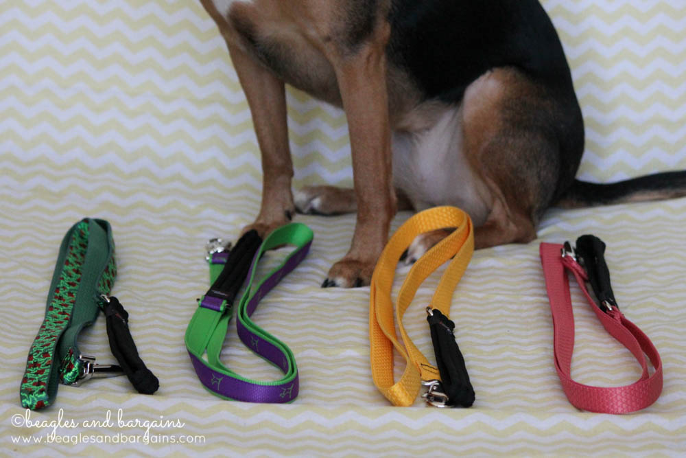Lupine Original Designer Patterned, CLUB, and ECO Collection Dog Leashes