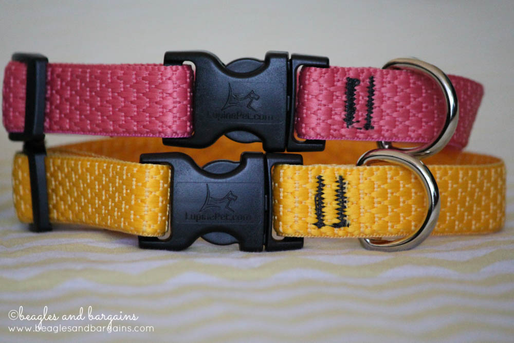 Lupine ECO Collection Dog Collars