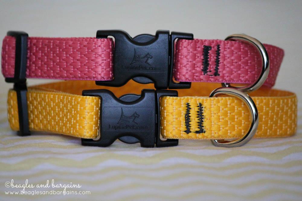 Lupine ECO Collection Dog Collars