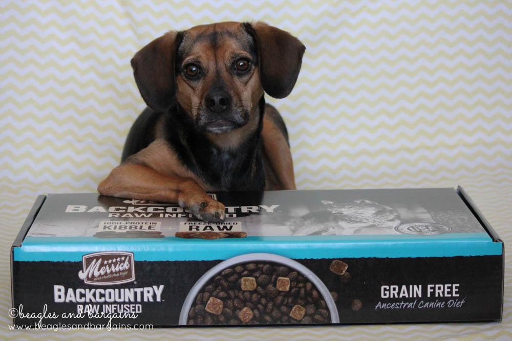 Merrick Pet Care Launches new product - Backcountry raw infused grain free kibble