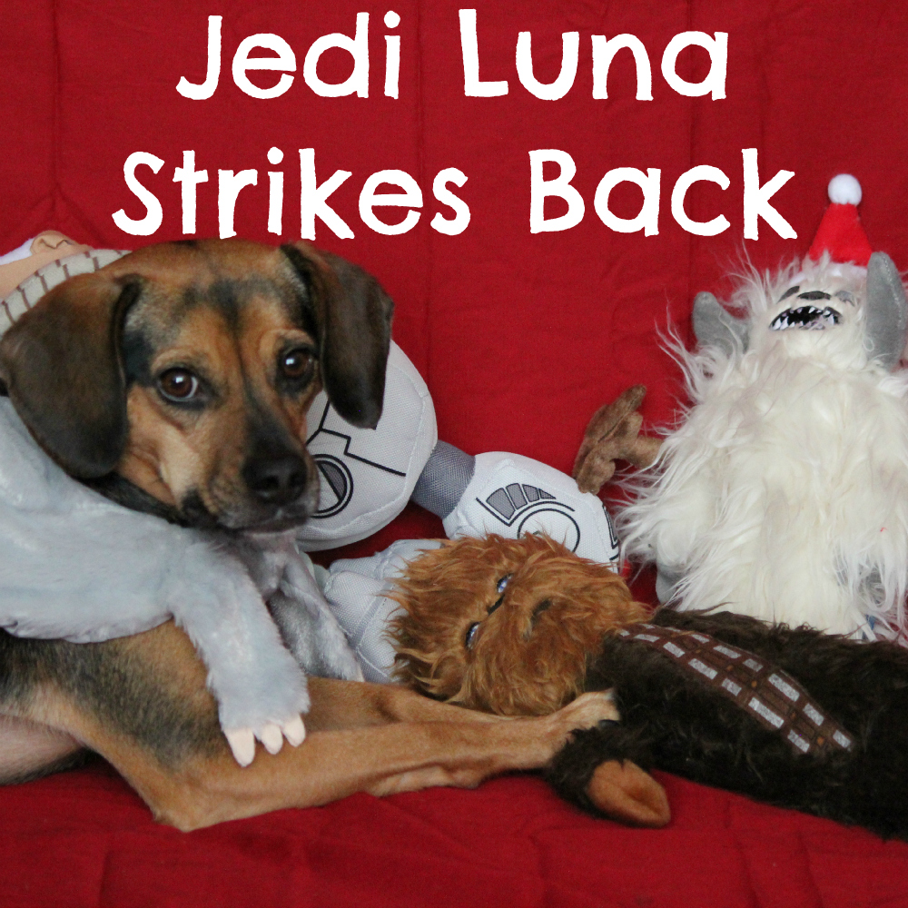 Jedi Luna Strikes Back