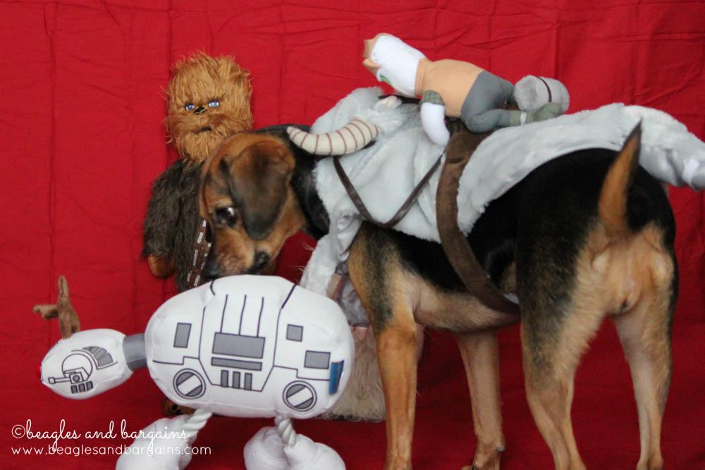 Jedi Luna Strikes Back