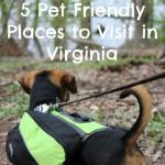 Virginia – 5 Pet Friendly Places to Visit
