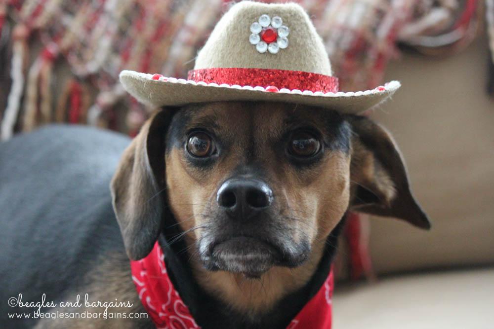 Luna models her Rhinestone Cowboy Hat
