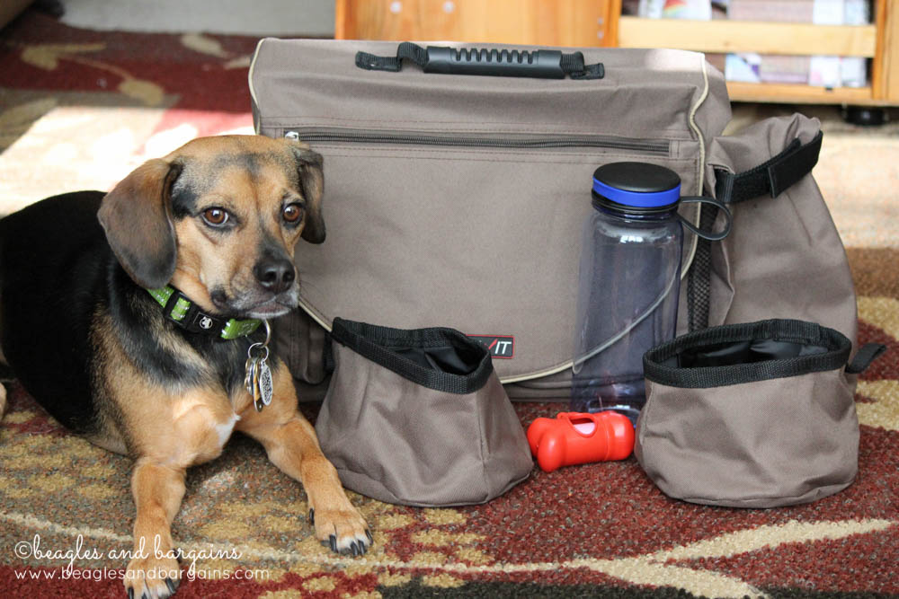 Luna with Solvit HomeAway Pet Travel Organizer Kit