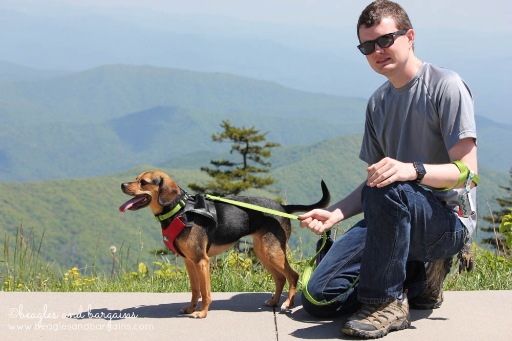 52 Snapshots of Life - My boyfriend and Luna in the Great Smoky Mountains