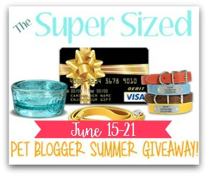 The Super Sized Pet Blogger Summer Giveaway!