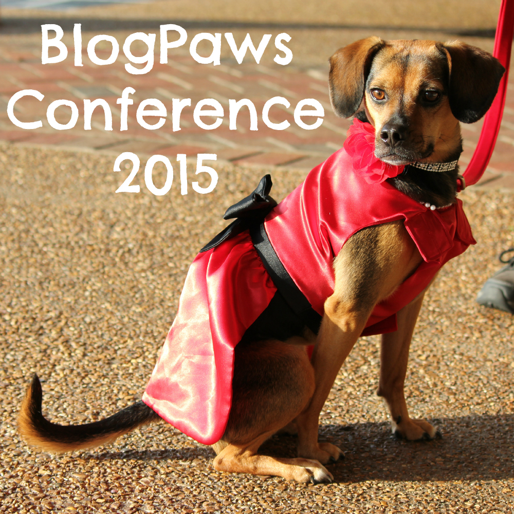 BlogPaws Conference 2015 Recap