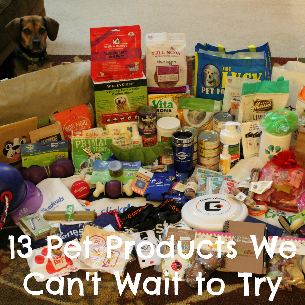13 Pet Products We Can't Wait to Try from BlogPaws 2015