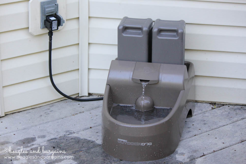 52 Snapshots of Life - Water - PetSafe Drinkwell Outdoor Dog Fountain