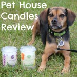 One Fur All Pet House Candles – The Pet Lover's Soy Candle