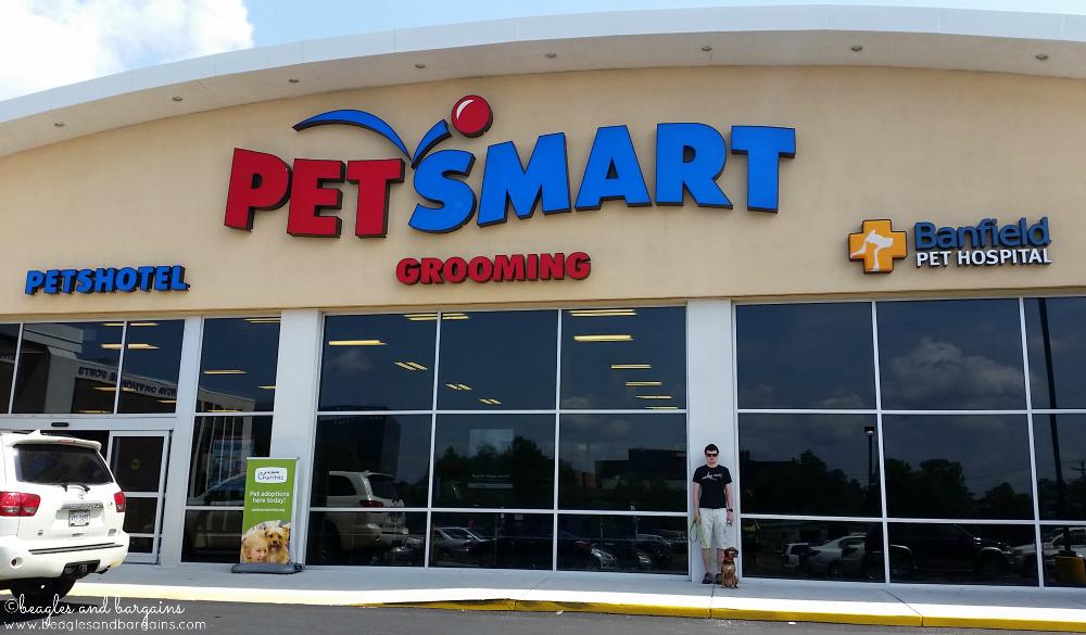Luna visits PetSmart
