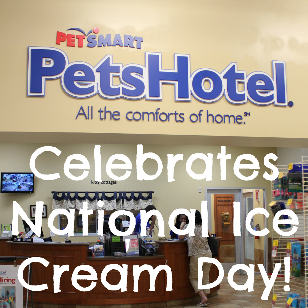 PetSmart PetsHotel celebrates National Ice Cream Day