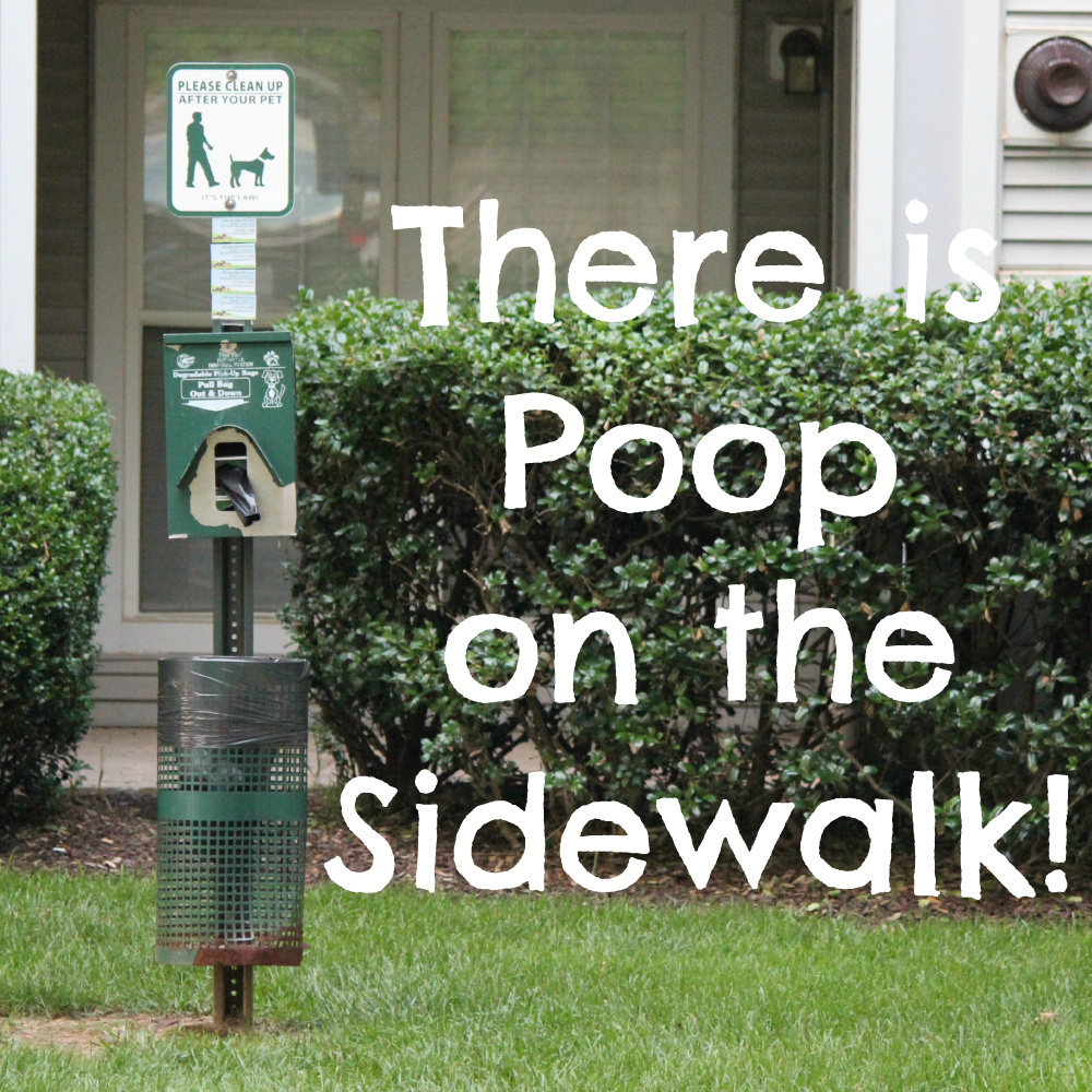 There is Poop on the Sidewalk!