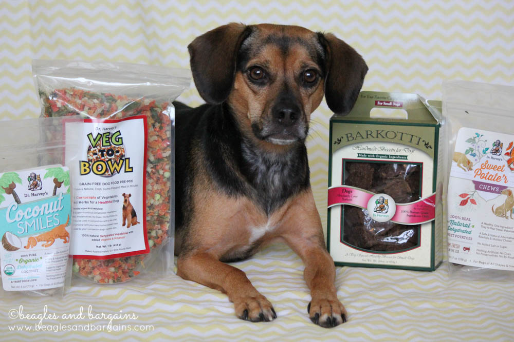 Luna loves natural food and treats from Dr. Harvey's.